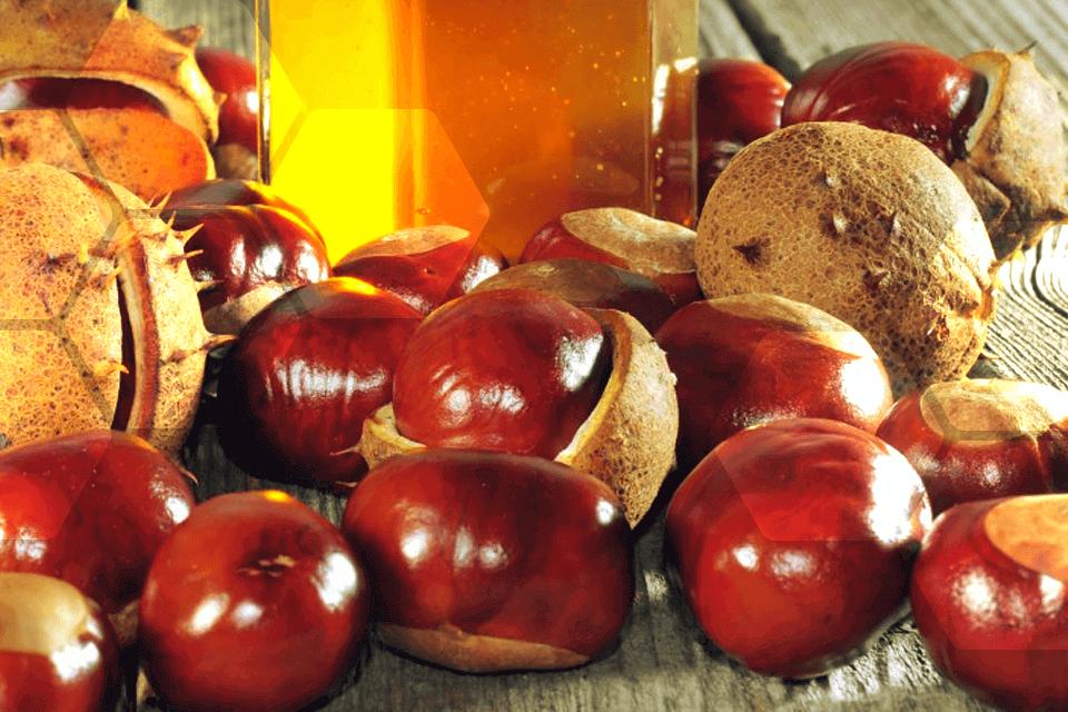 alimentation a chaque miel bio ses bienfaits