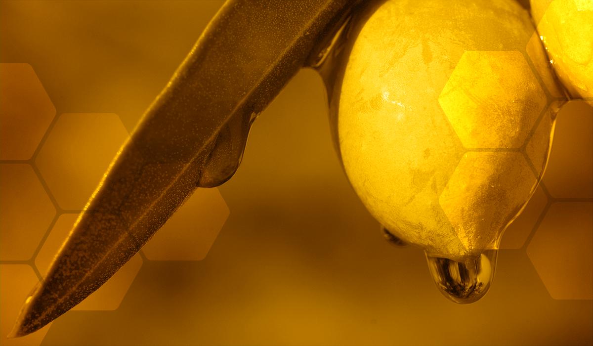 Alimentation-choisir-son-huile-olive-vignette