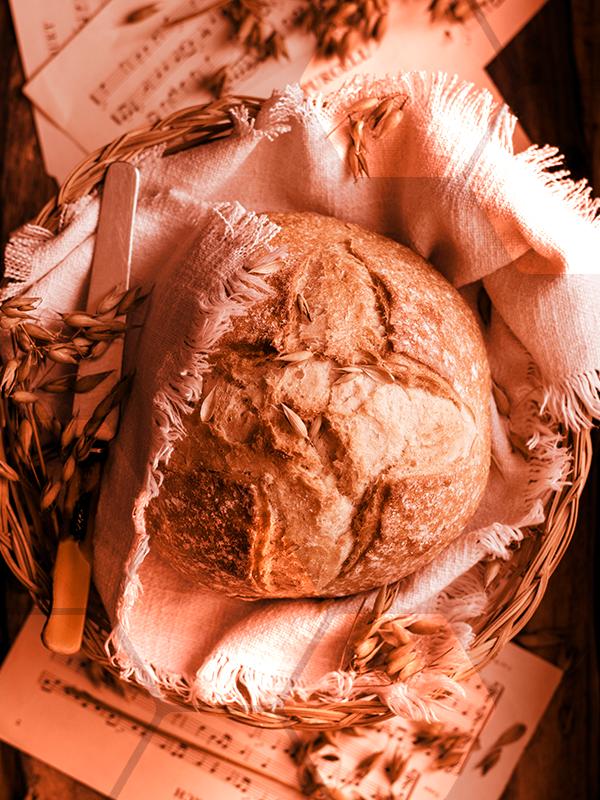 consommer autrement ne plus jeter le pain