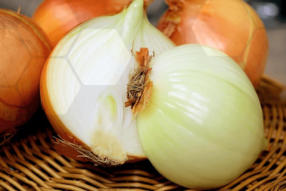 alimentation fruits et légumes de novembre
