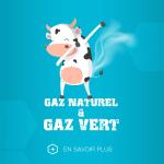 énergie gaz naturel et gaz vert
