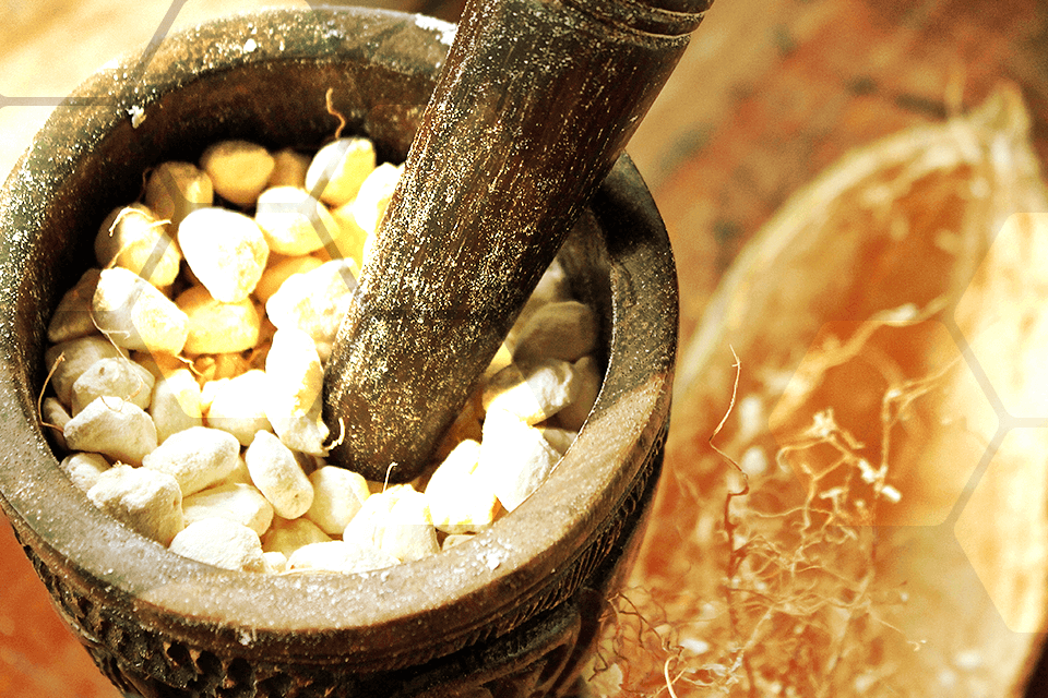 alimentation alternatives au sucre