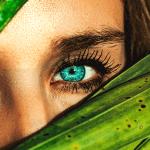 cosmetiques-toxiques